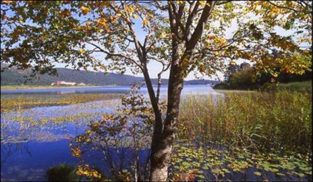 Abant & Cennet Göl Turu